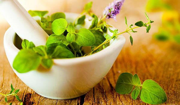 Plantes_beaute_sante_bien_etre_remedes_naturels.jpg